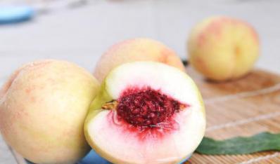 为何水蜜桃容易烂,猕猴桃不容易烂?